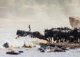 Tansania Flugsafari – Serengeti & Sansibar